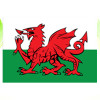 Welsh Economic Dragon!
